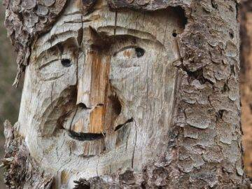 20 Amazing Wood Sculptures You Won't Believe!