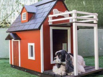 Top 15 Most Luxurious Dog Houses in The World!