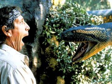Can Huge Anacondas Swallow A Human? Would You Survive?