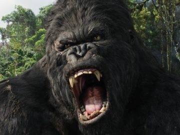 How To Survive A Gorilla Attack!