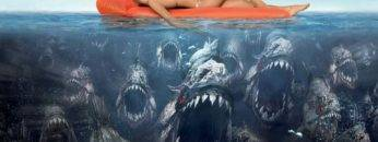 Would You Die If You Fell Into A Pool Of Hungry Piranha?