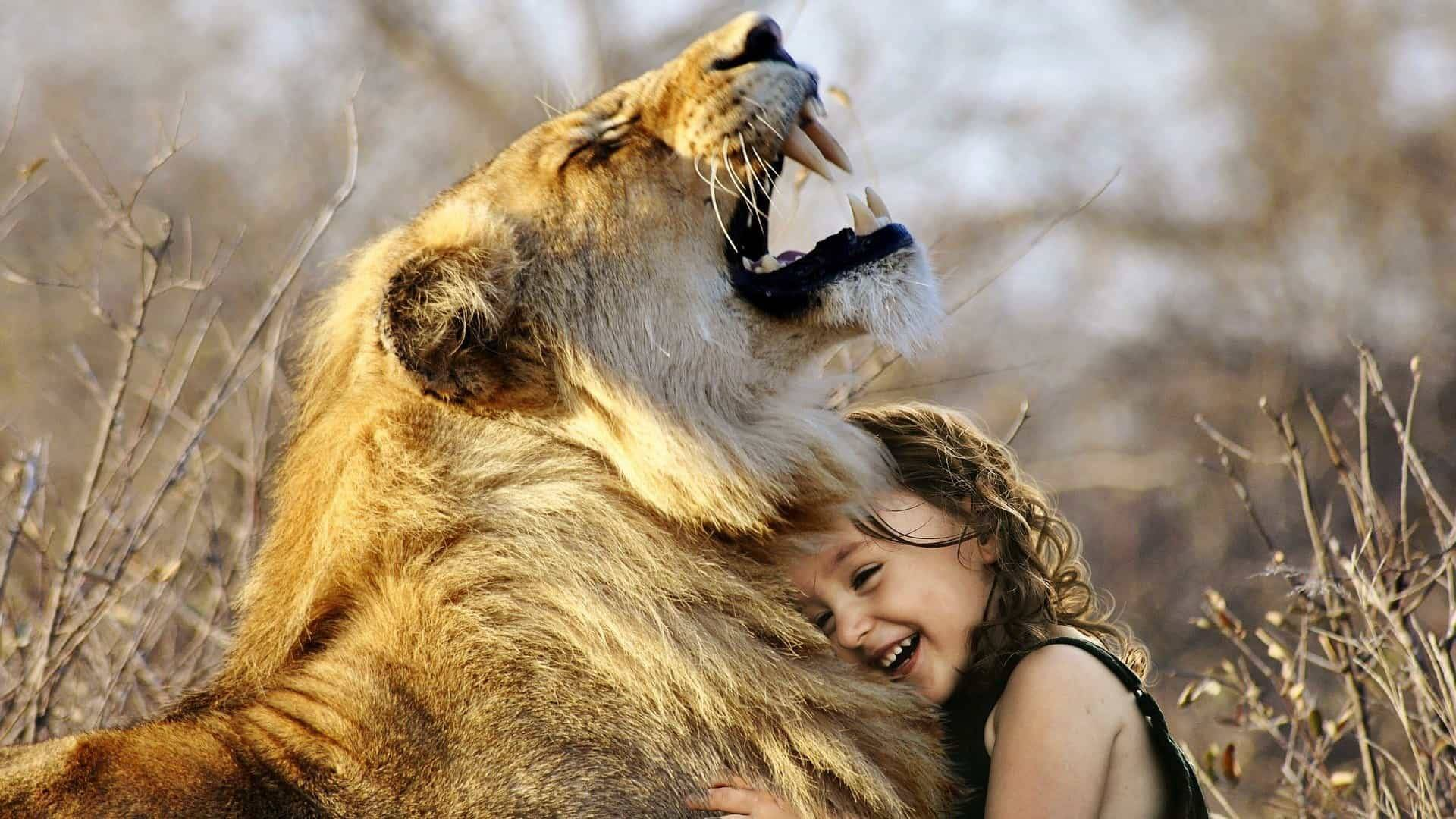 Top 10 Amazing Relationships Between Animals And Humans!
