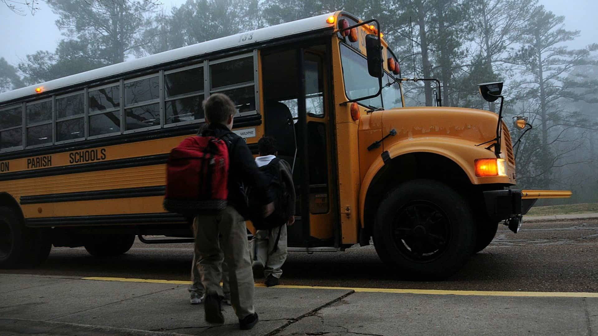 Top 15 Worst Field Trips Ever That Went Horribly Wrong!