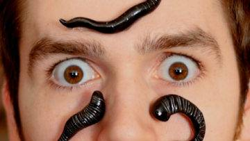 Can Leeches Kill You? (If Your Body Was Covered In Them)