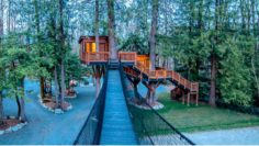 Top 15 Amazing Treehouses That Are Totally Cool!